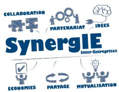 SynergIE : Synergie Inter-Entreprises